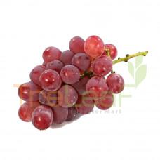 FRUIT ANGGUR MERAH