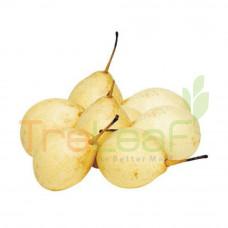FRUIT LAI SHIJI