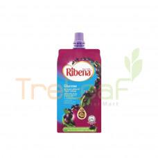 RIBENA FRUIT DRINK PET B/CURRANT GLUCOSE 330ML