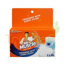 KIWI KLEEN MR MUSCLE BLOO CLEANER (40GMX2'S)
