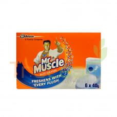 KIWI KLEEN MR MUSCLE BLOO CLEANER (40GMX6'S)